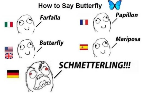 german meme butterfly