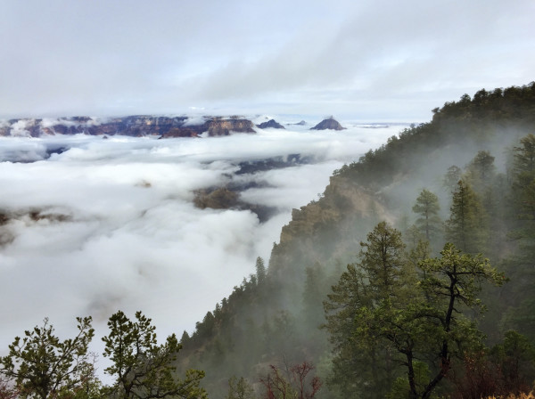 fog grand canyon arizona